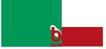 bertha online logo